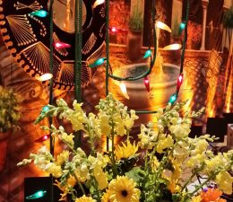 erik valentine - Mexican